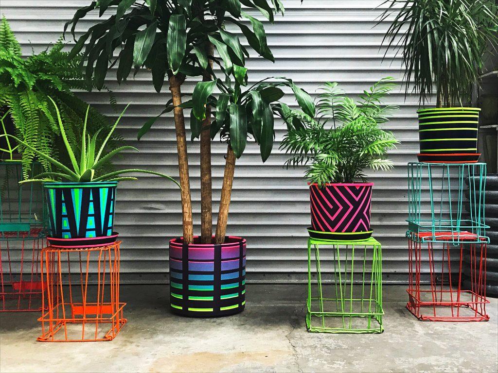 Rave Plant Pots
